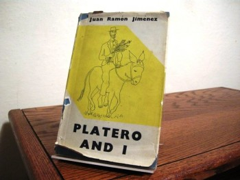Image for Platero and I