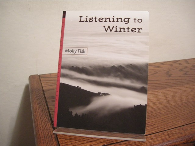 Image for Listening to Winter